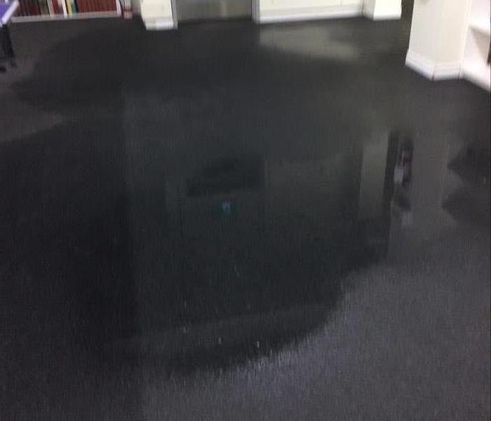 Wet commercial carpet with water standing